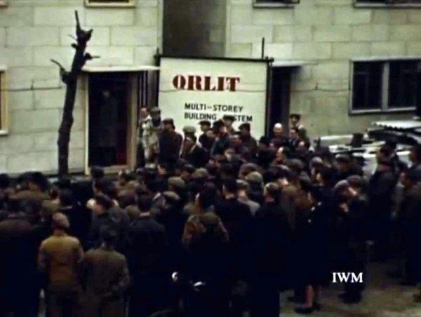orlit6