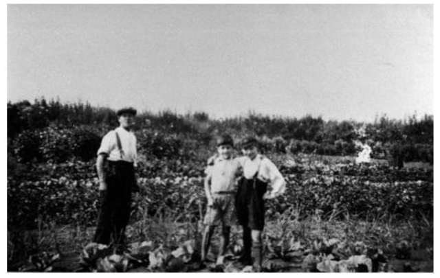 mudchute-allotments-1920s-31780935136